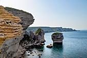 Cliffs on the rugged coastline near the town of Bonifacio on the Mediterranean island of Corsica, Bonifacio, Corsica, France, Mediterranean, Europe