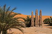 Old oasis sign, Beni Abbes, Sahara, Algeria, North Africa, Africa