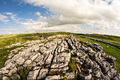 Limestone pavement above Malham, Yorkshire Dales, Yorkshire, England, United Kingdom, Europe