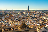 View of the historic center of Seville with Torre Sevilla (Tower of Seville) in the background, Seville, Andalucia, Spain, Europe
