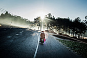 Rear view of motorbike driving along a highway through forests.