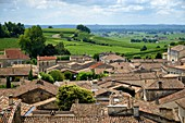 France, Gironde, Saint Emilion, listed as World Heritage by UNESCO, village roofs and vineyard