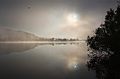 Fog on the Danube at Donaustauf, Danube, Bavaria, Germany