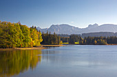 View over the Schwaltenweiher near Seeg to the chain of the Allgäu Alps, Allgäu, Bavaria, Germany