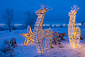 Illuminated sculptures in front of the mountain hotel, winter landscape on Kahler Asten near Winterberg, Sauerland, North Rhine-Westphalia, Germany