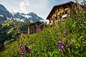 Berggasthof Obersteinberg, rear Lauterbrunnen Valley, Lauterbrunnen, Murren, Bernese Oberland, Switzerland