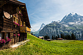 Murren, Lauterbrunnen Valley, Lauterbrunnen, Canton of Bern, Bernese Oberland, Switzerland