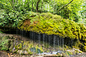 Wutach Gorge, Bonndorf, Baden-Württemberg, Black Forest, Germany