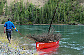 Man pulls his red canoe loaded with wood over the Yukon River, Canada, Yukon Territory;
