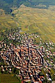 France, Haut Rhin, Alsace Wine Route, Eguisheim, labelled Les Plus Beaux Villages de France (The Most Beautiful Villages of France) (aerial view)