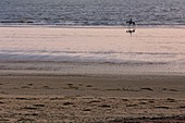 France, Vendee, Saint Jean de Monts, rider on the beach