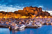 France, Haute Corse, Calvi, view of the citadel from the port