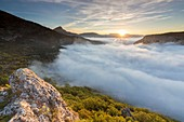 France, Alpes de Haute Provence, regional natural reserve of Verdon, cloud sea on him Grand Canyon of Verdon