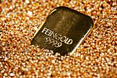 Gold ingot, Frankfurt, Germany, Europe