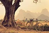 Fahrrad, Baum und Berge, Yulong River Valley, Yangshuo, Provinz Guangxi, China, Asien