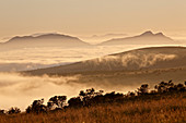 Cloud layer at dawn, Mountain Zebra National Park, South Africa, Africa