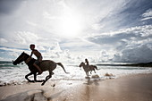 Zwei Jungen auf Pferden spielen im Ozean in Nihiwatu, Sumba, Indonesien, Südostasien, Asien