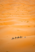Tourists on a camel ride in Erg Chebbi Desert, Sahara Desert near Merzouga, Morocco, North Africa, Africa