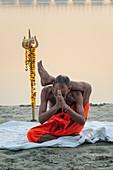 Sadhu practising yoga at sunrise on Ganges riverbank, Allahabad Kumbh Mela, Allahabad, Uttar Pradesh, India, Asia