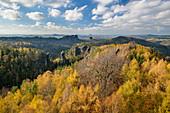 Felstürme im Elbsandsteingebirge überragen herbstlich verfärbten Wald, Carolafelsen, Elbsandsteingebirge, Nationalpark Sächsische Schweiz, Sächsische Schweiz, Sachsen, Deutschland