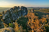 View of rock towers of the Schrammsteine, Schrammsteinaussicht, Elbe Sandstone Mountains, Saxon Switzerland National Park, Saxon Switzerland, Saxony, Germany
