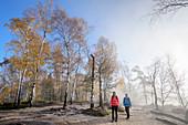 Mann und Frau wandern durch Birkenwald, Carolafelsen, Elbsandsteingebirge, Nationalpark Sächsische Schweiz, Sächsische Schweiz, Sachsen, Deutschland
