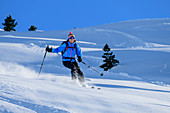 Woman on ski tour starts through powder snow, Regenfeldjoch, Kitzbüheler Alpen, Tyrol, Austria