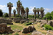 Ruins at the Agora archaeological site in the city of Kos, Kos, Dodecanese