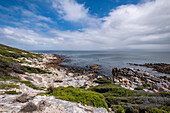 Coast at De Kelters, Gansbaai, Garden Route, South Africa, Africa