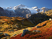Gwächtenhorn, Vordertierberg, Steingletscher, Bern, Schweiz