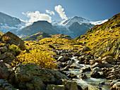 Gwächtenhorn, Vordertierberg, Steinwasser, Steinlimigletscher, Bern, Schweiz