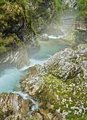 Fluss Radovna, Vintgar Klamm, Slowenien, Europa