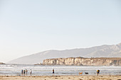 Beach walkers, bathers and dogs on the beach in Big Sur. California, United States