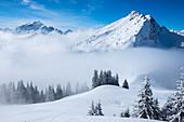Aufstieg zur Krinnenspitze mit Blick zum Litnisschrofen, Tannheimer Berge, Allgäu, Tirol, Österreich