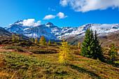 Landscape at the Simplon Pass with Fletschhorn, Valais, Switzerland
