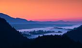 Nebel über Wald bei Sonnenaufgang bei Bled, Slowenien\n
