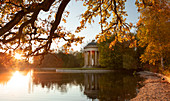 Apollo temple with tree in the Nymphenburg palace park in autumn at sunset, on the waterfront, Munich