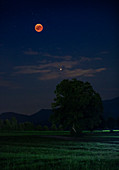Blood moon during lunar eclipse in summer 2018 with planet Mars over field in the night sky, Bavaria