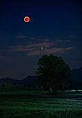 Blutmond bei Mondfinsternis im Sommer mit Planet Mars über Feld am Nachthimmel, Bayern