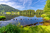 View of reflections in Schwarzsee, Kitzbuhel, Austrian Tyrol, Austria, Europe