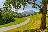View of country lane and Ellmauer Halt Mountain peak near St. Johann, Austrian Alps, Tyrol, Austria, Europe