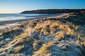 Frost auf Dünen, Oxwich Bay, Gower, Südwales, Großbritannien, Europa