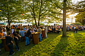 Summer festival in the vineyards, sunset, Meersburg, Baden-Württemberg, Germany