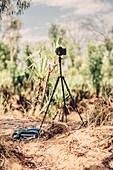 Photo taken with a tripod in the Kimberley region, Western Australia, Oceania,