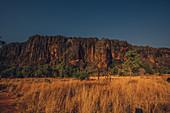 Windjana Gorge National Park in the Kimberley region in Western Australia, Australia, Oceania