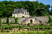 France, Indre et Loire, Loire Valley listed as World Heritage by UNESCO, Chancay, Castle and Gardens of Valmer, 16 th century, renaissance style