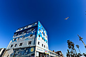 A seagull in the deep blue sky in front of the colorful house facade on Venice Beach, California, USA