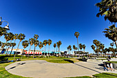 People enjoy their time in a park with palm trees on Ocean Front Walk, Venice Beach, California, USA