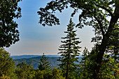 In the forest in the Sierra Nevada with a view of the vast landscape at Nevada City, California, USA