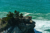 A forested rock peak in the Pacific, near Julia Pfeiffer Burns State Park, California, USA